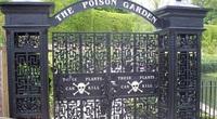 """Có gì bên trong """"Vườn Độc Dược"""", nơi nguy hiểm bậc nhất nước Anh?"""