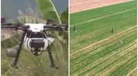 """Nông dân Trung Quốc gieo hạt bằng """"trực thăng"""" mùa Covid-19"""