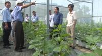 Nông thôn mới HậuGiang: Sức bật từ sản xuất nông nghiệp hàng hóa ở Phụng Hiệp