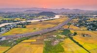 Bức họa đồng quê đẹp mê mẩn ở Bình Định