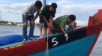 Quảng Ngãi: Phạt 900 triệu đồng một chủ tàu cá do khai thác thủy sản không có giấy phép