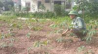 """Quảng Ninh: Huyện làm dự án """"chui"""", xã hứa """"hão"""" khiến nông dân mất đất"""