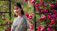 """""""Mê cung"""" thung lũng hoa lớn nhất Việt Nam ở Sa Pa"""