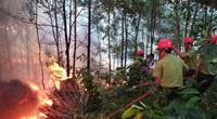 Cháy rừng cũng là một dạng thiên tai đặc thù