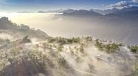 Cảnh Sa Pa chìm trong mây trắng đẹp như tranh vẽ