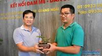 Quảng Ngãi: Choáng với giò lan phi điệp đột biến Hồng Minh Châu mua 13 triệu chưa đầy năm bán 580 triệu