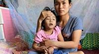 Đấu giá phong lan hàng trăm triệu, giúp bé gái nhà nghèo chữa bệnh