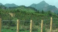 """Thái Nguyên: Hàng chục nghìn m2 đất dự án quốc phòng """"bỗng"""" biến mất"""
