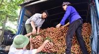 """Lạng Sơn: Tạo điều kiện tối đa đưa vải thiều, xoài """"rộng đường"""" xuất ngoại"""