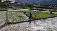 Vụ thảm án 3 người chết ở Điện Biên: Gia đình nghi phạm còn nợ hàng chục tỷ đồng