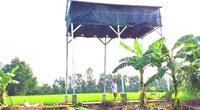 Hậu Giang: Từ mảnh vườn khuất sau nhà, làm chuồng nuôi dơi bé tí mà cũng có 50 triệu đồng
