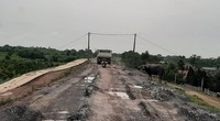 Bộ NNPTNT đề nghị các tỉnh ngăn chặn, xử lý dứt điểm tình trạng xe quá tải đi trên đê