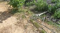 Nỗi lo mạng điện nông thôn miền núi