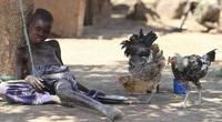 9 dịch bệnh quái quỷ trong lịch sử nhân loại