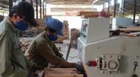 """Đủ """"đất"""" để xuất khẩu gỗ đạt 11 tỷ USD"""