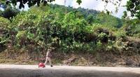 Cô gái 23 tuổi bỏ việc đi bộ xuyên Việt tìm giới hạn bản thân