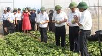 Hội Nông dân Nghệ An: Xây dựng 12 mô hình điểm về sản xuất, chế biến nông sản thực phẩm an toàn