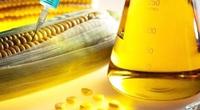 Điều tra đường lỏng chiết xuất từ tinh bột ngô có xuất xứ Trung Quốc, Hàn Quốc sau yêu cầu của 6 công ty