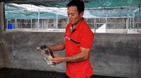 Áp dụng kỹ thuật nuôi cua đinh trong bể kính: Nông dân miền Tây thắng lớn