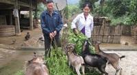 Tuyên Quang: Xây mô hình hay giúp hội viên nghèo làm ăn
