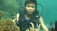 """Bình Định: Khách du lịch đã kéo về cái làng này để nông dân dẫn đi ngắm """"rừng dưới biển"""""""