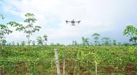 Gia Lai: Tận mắt xem máy bay không người lái phun thuốc vườn chanh leo 100ha