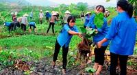 10 cách bảo vệ môi trường sống vì sức khỏe cộng đồng
