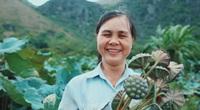 Trồng loại hoa thơm nức lấy hạt bán, nông dân Hà Nam thu nhập gấp 5-6 lần cấy lúa
