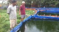 Từ 10.000 con cá giống hỗ trợ, nhà nông thoát nghèo, lại còn thu lãi 200 triệu đồng