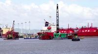 Hàng hóa qua cảng biển tăng trưởng bất chấp dịch Covid-19