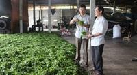Hơn 3 triệu lượt hội viên, nông dân vay vốn ưu đãi