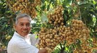 Covid-19 cản đường nhân viên kiểm dịch, trái cây Việt Nam không thể xuất sang Mỹ