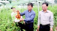 Gần 10 năm xây dựng nông thôn mới, xứ cát Quảng Bình rút ra điều gì?
