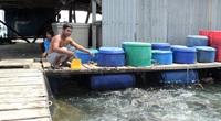 """""""Con trời ơi"""" là loài gì mà nông dân nuôi cá tỉnh Kiên Giang khiếp sợ?"""