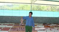 Bắc Kạn: Nông dân xóm núi nuôi vài trăm con dúi, xách đuôi lên có người nhầm là chuột cống