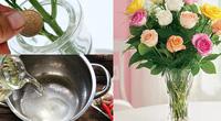 Mách nhỏ chị em cắm hoa bằng thứ này đảm bảo 10 ngày sau vẫn tươi mơn mởn, hương thơm ngào ngạt