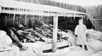 Đại dịch viêm phổi năm 1911 giết chết bao nhiêu người Trung Quốc?