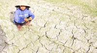Bao giờ các tỉnh Nam Trung bộ mới hết khát?
