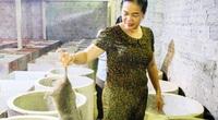 Nuôi loài chuột nghiện ăn tre, nứa, không cần uống nước, một nông dân tỉnh Hà Tĩnh phát tài
