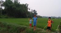 Kể chuyện làng: Những đụn rơm rạ làng Trạch Phổ