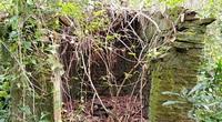 Đà Nẵng: Ngôi miếu đổ nát, hoang phế ẩn mình trong cánh rừng rậm rạp và những câu chuyện rùng mình