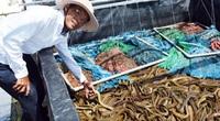"""Bạc Liêu: Chàng tỷ phú nông dân nuôi la liệt cá, tôm """"độc, lạ"""" bắt bán cả trăm tấn mà phát tài"""
