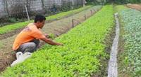 Hà Tĩnh: Bí thư chi bộ 7X tâm huyết xây dựng nông thôn mới