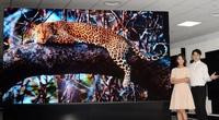 TV LG Magnit kích cỡ khủng đột phá về chất lượng, độ bền