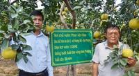 Ở nơi này, nông dân giàu có nhờ trồng cây đặc sản, trồng rau xanh