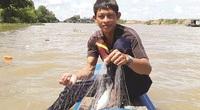 """An Giang: """"Thợ săn"""" cá đồng thỏa thú tiêu dao mùa nước lũ từ thượng nguồn nhuốm đỏ cả sông"""