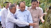 Thăm vườn sầu riêng lãi 1,1 tỷ đồng/năm, Thủ tướng động viên nông dân chiến thắng hạn, mặn