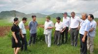 """Chủ tịch Hội Nông dân Việt Nam: Tập đoàn TH như """"chim đại bàng"""" đang vươn cánh ra thế giới"""