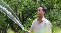 Dám thay đổi tư duy nông nghiệp cũ kỹ, một nông dân Bắc Giang thu tiền tỷ từ vườn cây nhà mình