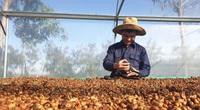 """Nông nghiệp miền Trung - Tây Nguyên cần """"cú hích"""" để tạo đột phá (bài cuối): Tăng liên kết và chế biến sâu"""